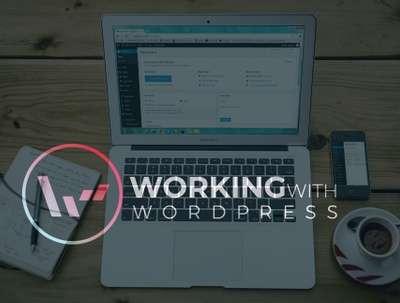 Provide UK Maintenance, Dev or Wordpress support for 1 hour