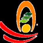 Shiva Technology Solutions