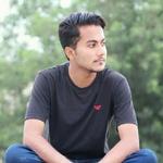 Aurangzaib P.