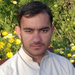 Mehmood A.