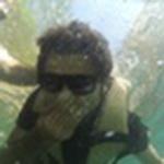 Faraz's avatar
