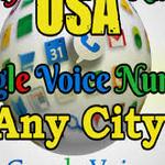 Google Voice S.