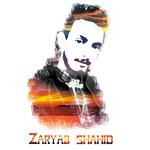 Zaryab S.