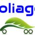 Foliage T.
