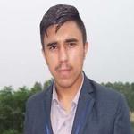 Hamza Ali S.