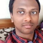 Gopi Krishna N.