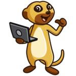 Meerkat Web Design Limited's avatar