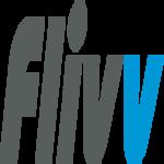 Flivv web D.
