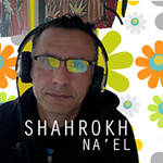 Shahrokh N.