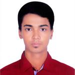 Md. Mahdi Hassan P.