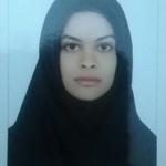 Fatemeh S.