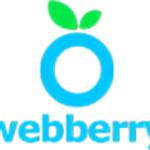 TheWebberry Team