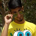 Mohsin V.
