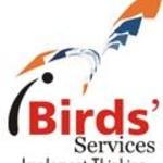 Ibirds S.