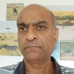 Harsukh Bhanderi