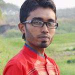 Md Mahadiul Islam
