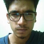 Dikshant K.