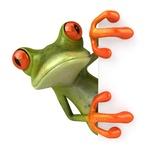 Redberryfrog ..