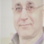 Ansari M.