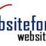 Websitefor $100