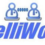 Intelliworks I.
