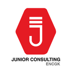 JUNIOR CONSULTING