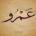 Amr A.