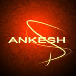 Ankesh P.