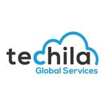 Techila Services
