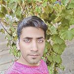 Mojtaba B.