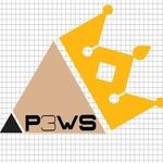 P3WS C.