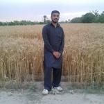 Muhammad Toqeer