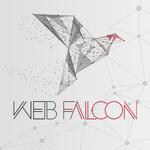 Web Falcon sp. z o.o.'s avatar