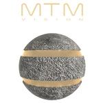 MTM VISION Ltd's avatar