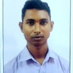 Biswajit D.