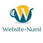 Website N.