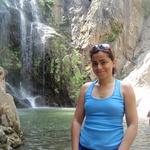 Nazanin S.