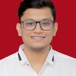 MagnusMinds IT Solution LLP's avatar