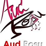 Aud Rosu T.