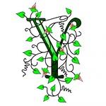 Yulia G.