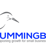 Hummingbird Sales