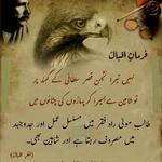 Idrees Hussain C.