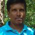 Venkatesha M.