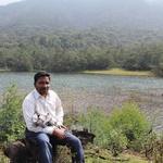 Gopalakrishnan A.