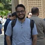 Mohamed S. Tawfik